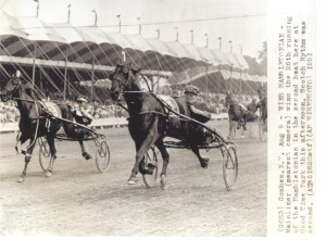 Mainliner 3 001 300x221 wiharnessracing page 2 wisconsin harness racing hall of fame